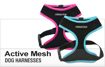 Active Mesh Dog Harnesses