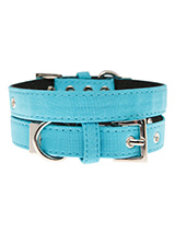 Neon Blue Fabric Collar - Our high visibility Neon Blue collar has a clean contemporary bold style. It is lightweight and incredibly strong. The collar has been finished with chrome detailing including the eyelets and tip of the collar. A matching lead and harness are available to purchase separately. This high visibility st...